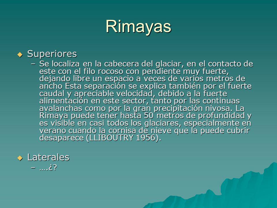 Rimayas Superiores Laterales