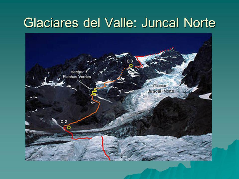 Glaciares del Valle: Juncal Norte