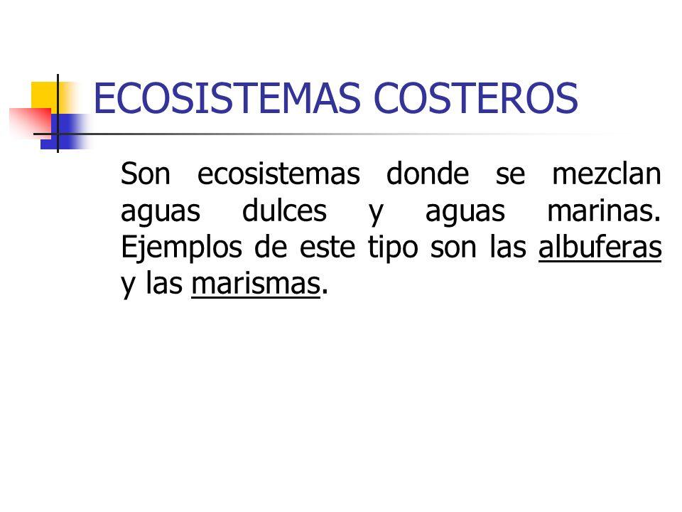 ECOSISTEMAS COSTEROS Son ecosistemas donde se mezclan aguas dulces y aguas marinas.