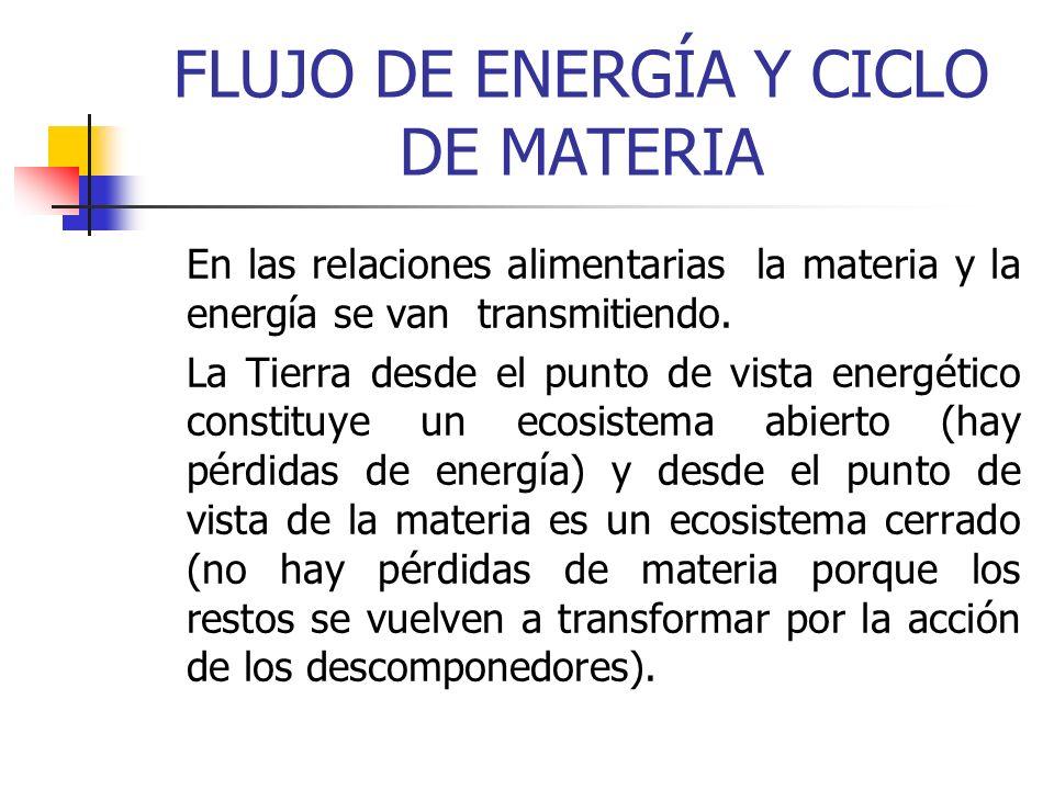 FLUJO DE ENERGÍA Y CICLO DE MATERIA