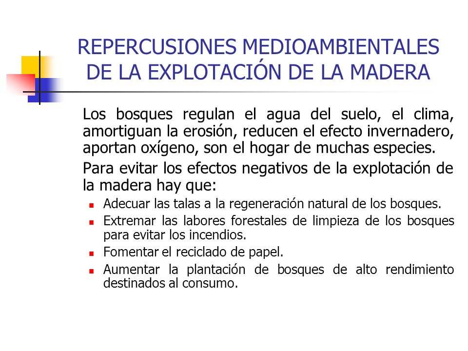 REPERCUSIONES MEDIOAMBIENTALES DE LA EXPLOTACIÓN DE LA MADERA