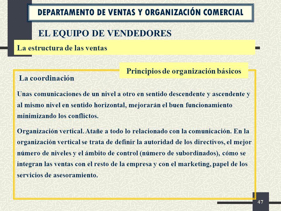 Principios de organización básicos