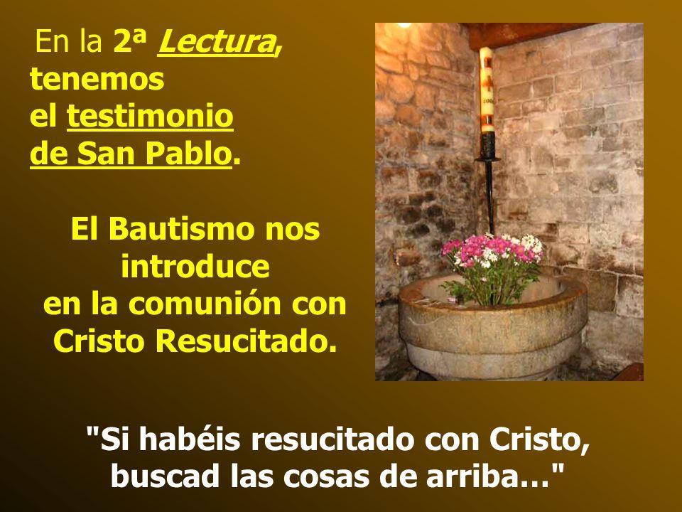 El Bautismo nos introduce en la comunión con Cristo Resucitado.