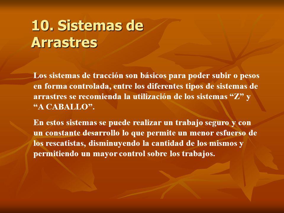 10. Sistemas de Arrastres