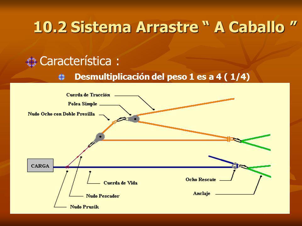 10.2 Sistema Arrastre A Caballo