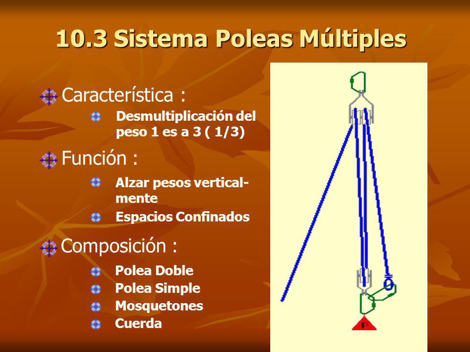 10.3 Sistema Poleas Múltiples