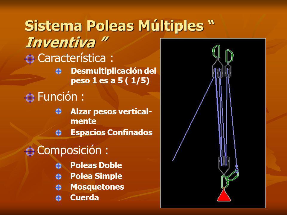 Sistema Poleas Múltiples Inventiva
