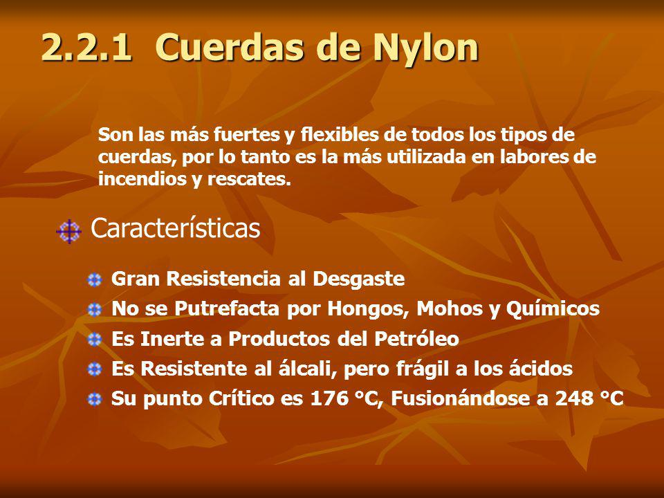 2.2.1 Cuerdas de Nylon Características Gran Resistencia al Desgaste