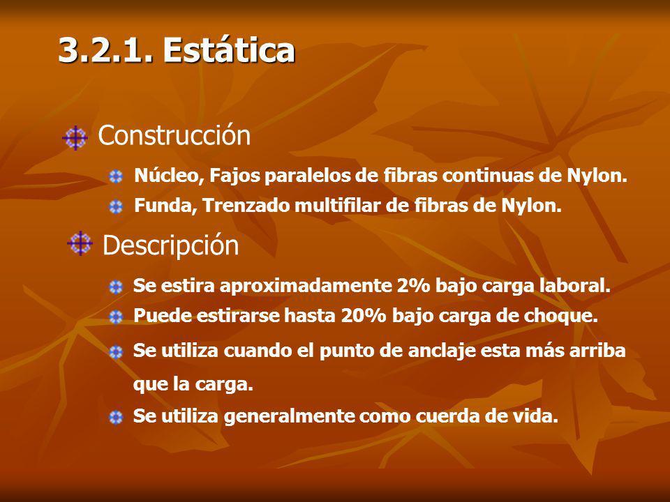 3.2.1. Estática Construcción Descripción