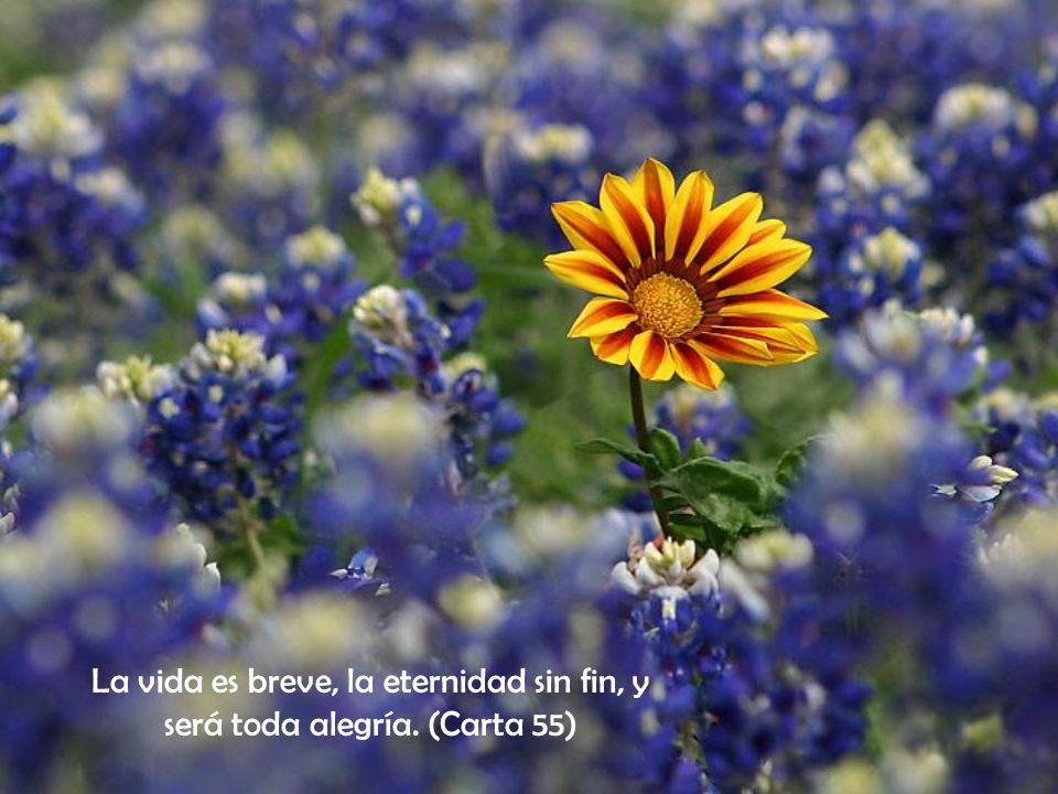 La vida es breve, la eternidad sin fin, y será toda alegría. (Carta 55)