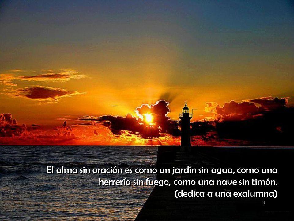 El alma sin oración es como un jardín sin agua, como una herrería sin fuego, como una nave sin timón.