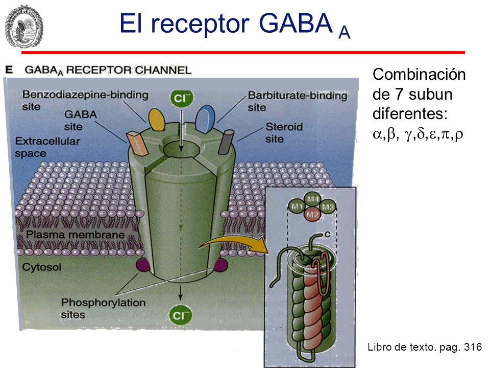 El receptor GABA A Combinación de 7 subun diferentes: ,, ,,,,