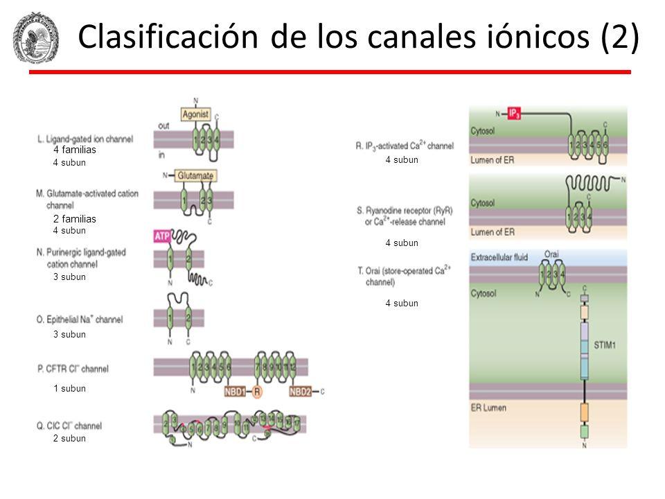 Clasificación de los canales iónicos (2)