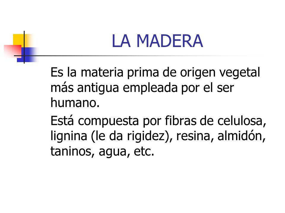 LA MADERA Es la materia prima de origen vegetal más antigua empleada por el ser humano.