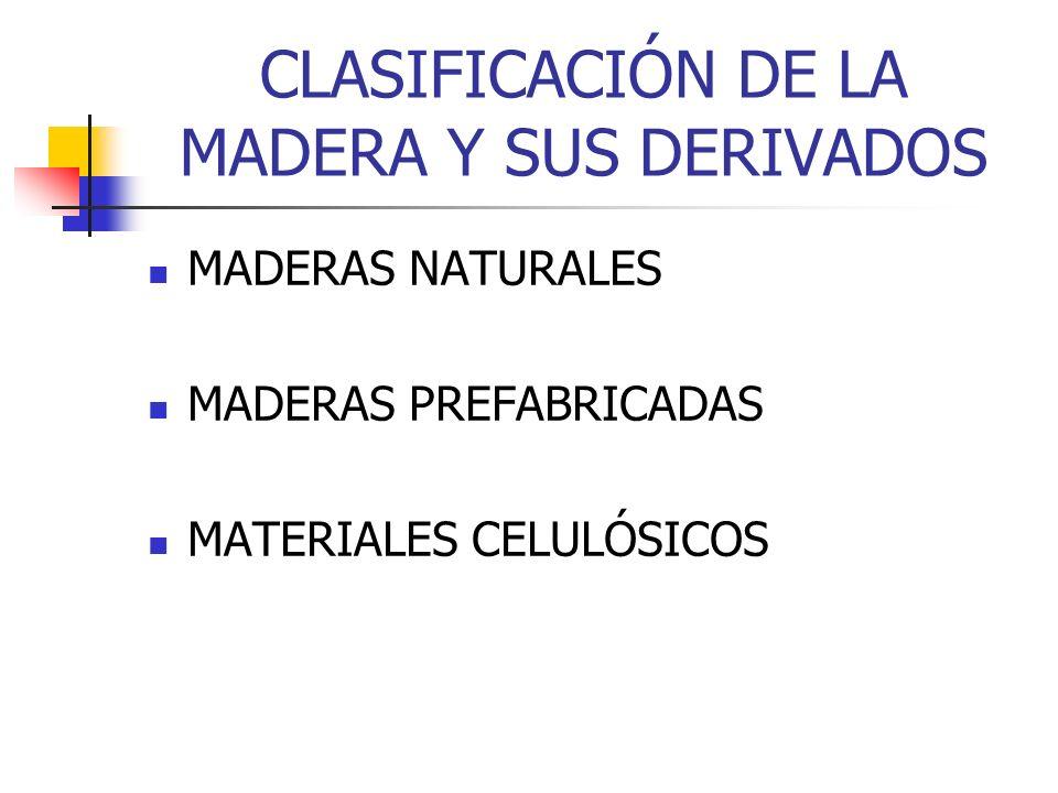 CLASIFICACIÓN DE LA MADERA Y SUS DERIVADOS