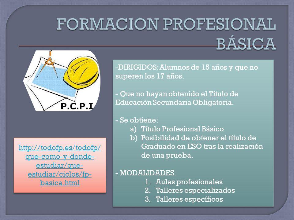 FORMACION PROFESIONAL BÁSICA