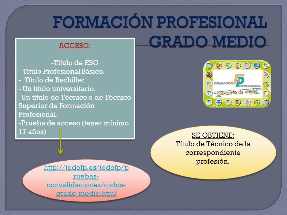FORMACIÓN PROFESIONAL GRADO MEDIO