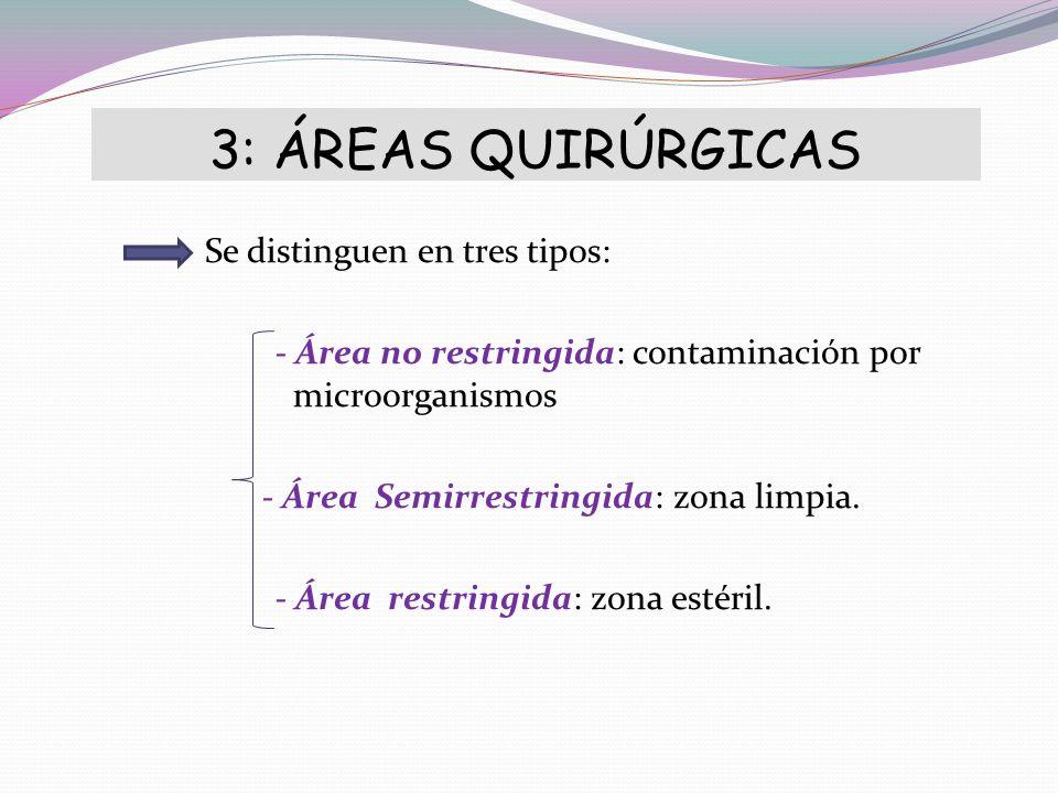 3: ÁREAS QUIRÚRGICAS