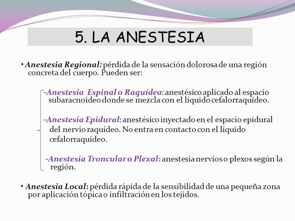 5. LA ANESTESIA
