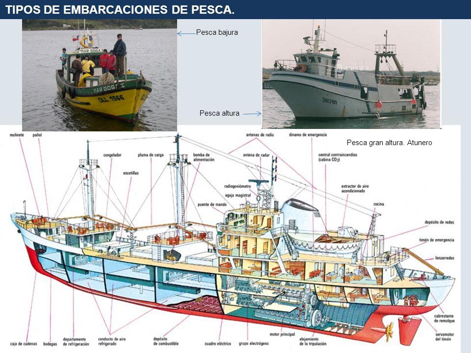 TIPOS DE EMBARCACIONES DE PESCA.