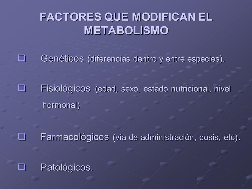 FACTORES QUE MODIFICAN EL METABOLISMO