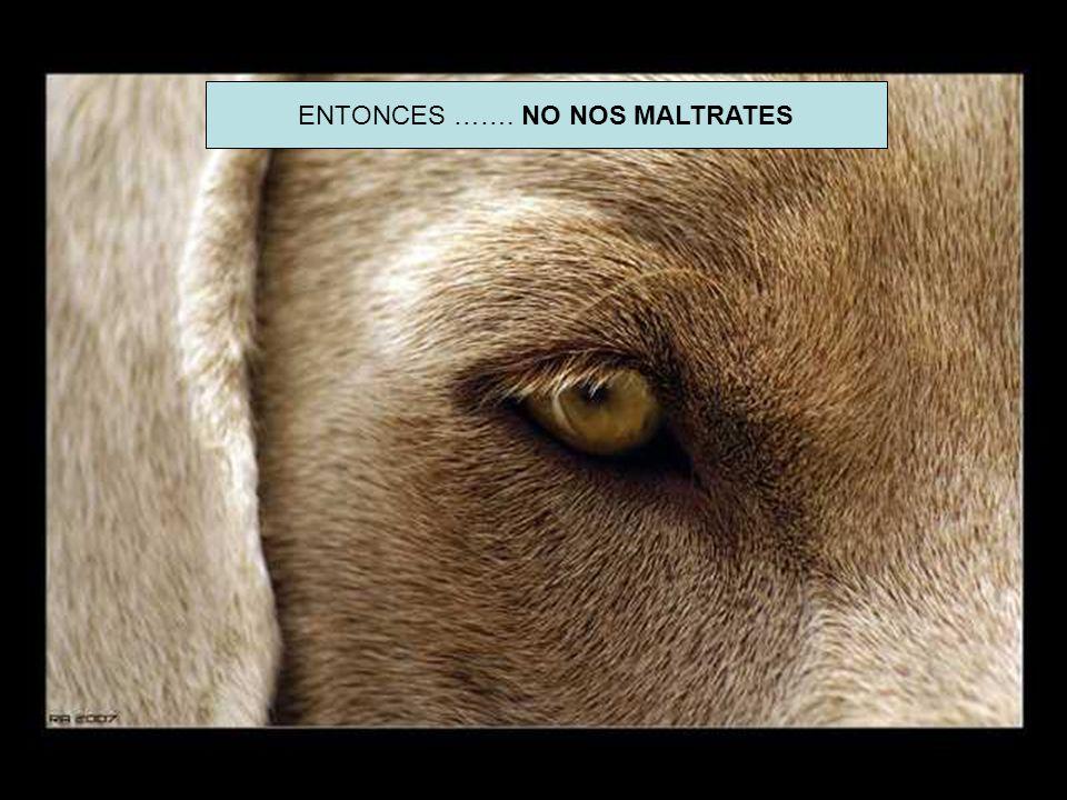 ENTONCES ……. NO NOS MALTRATES