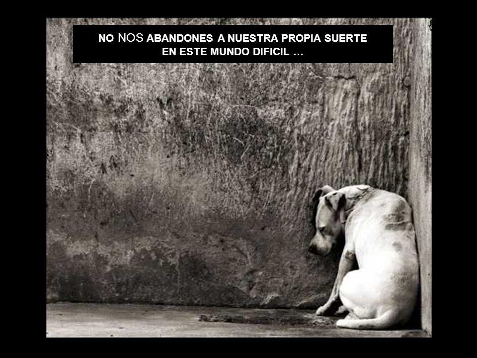 NO NOS ABANDONES A NUESTRA PROPIA SUERTE