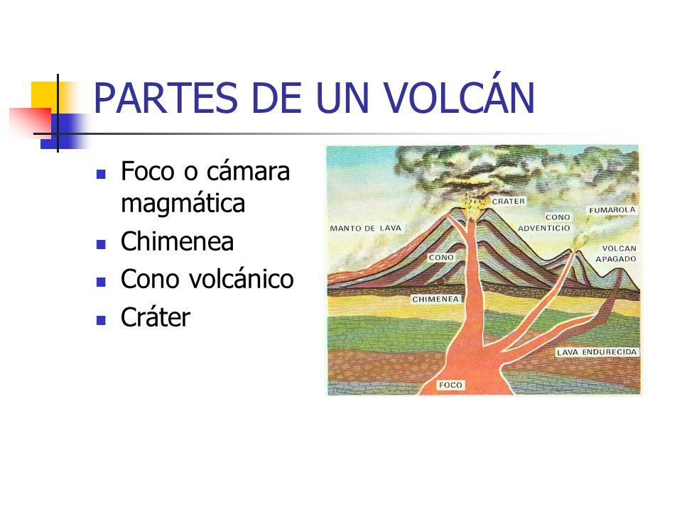 PARTES DE UN VOLCÁN Foco o cámara magmática Chimenea Cono volcánico