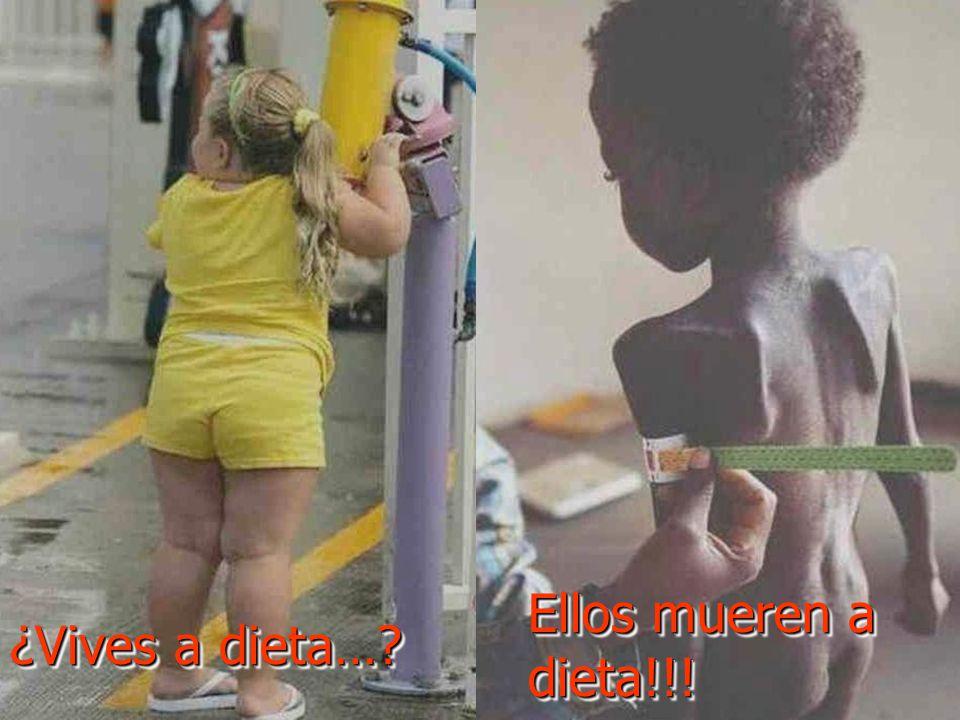 ¿Vives a dieta… Ellos mueren a dieta!!!