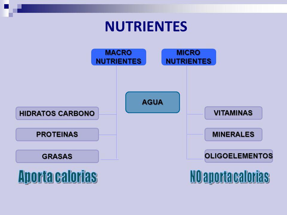 NUTRIENTES MACRO NUTRIENTES MICRO NUTRIENTES AGUA HIDRATOS CARBONO