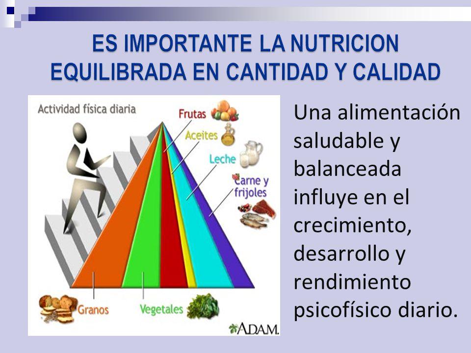 ES IMPORTANTE LA NUTRICION EQUILIBRADA EN CANTIDAD Y CALIDAD