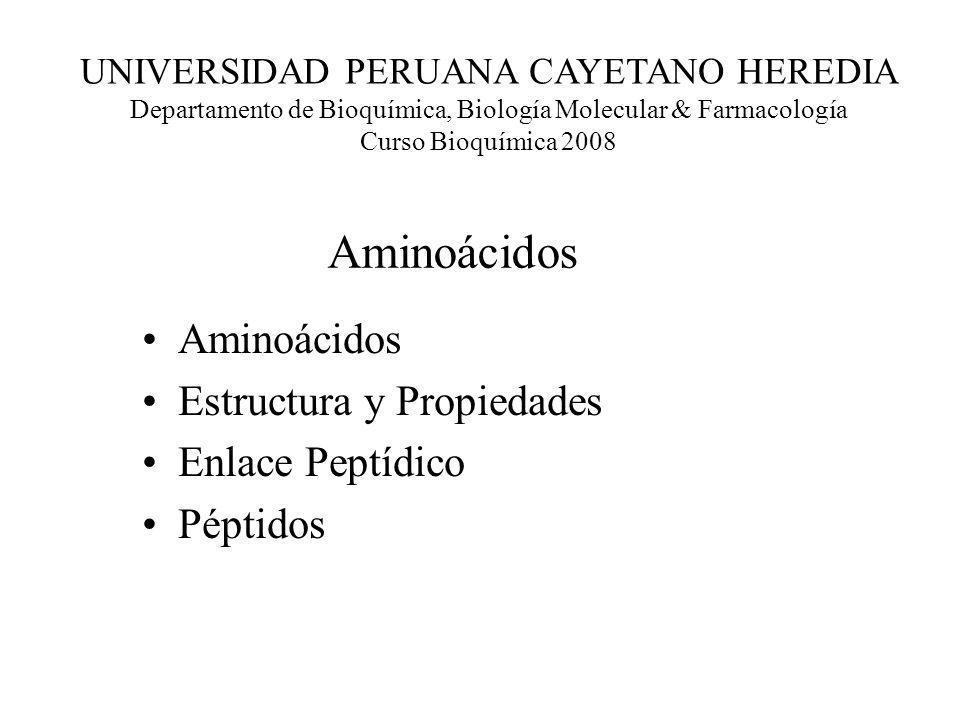 Aminoácidos Aminoácidos Estructura y Propiedades Enlace Peptídico