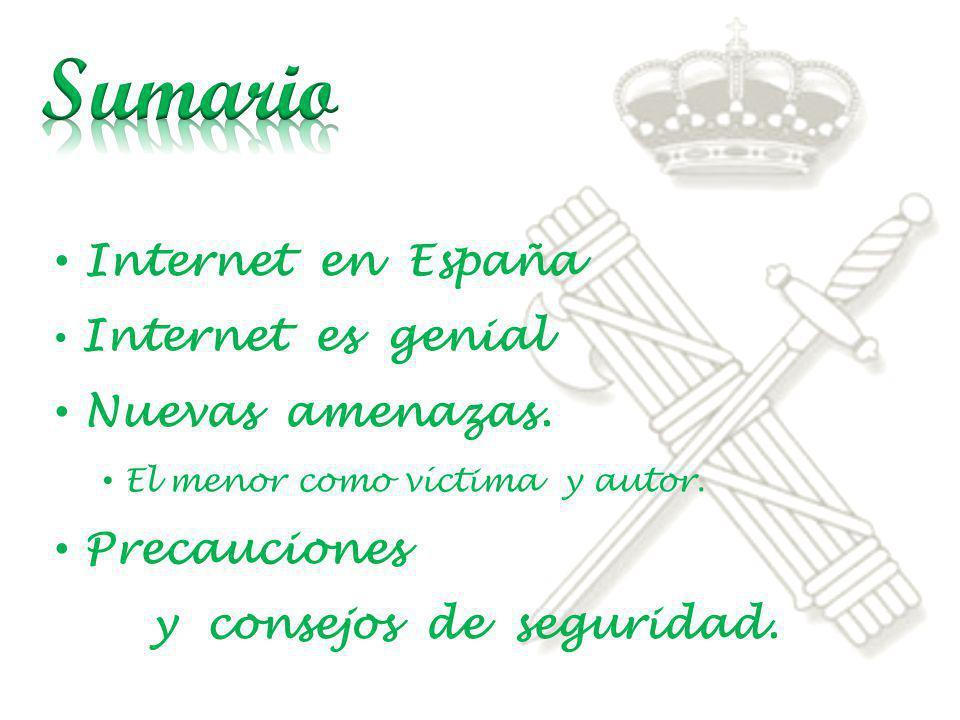 Sumario Internet en España Nuevas amenazas. Precauciones