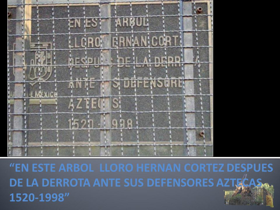EN ESTE ARBOL LLORO HERNAN CORTEZ DESPUES DE LA DERROTA ANTE SUS DEFENSORES AZTECAS 1520-1998