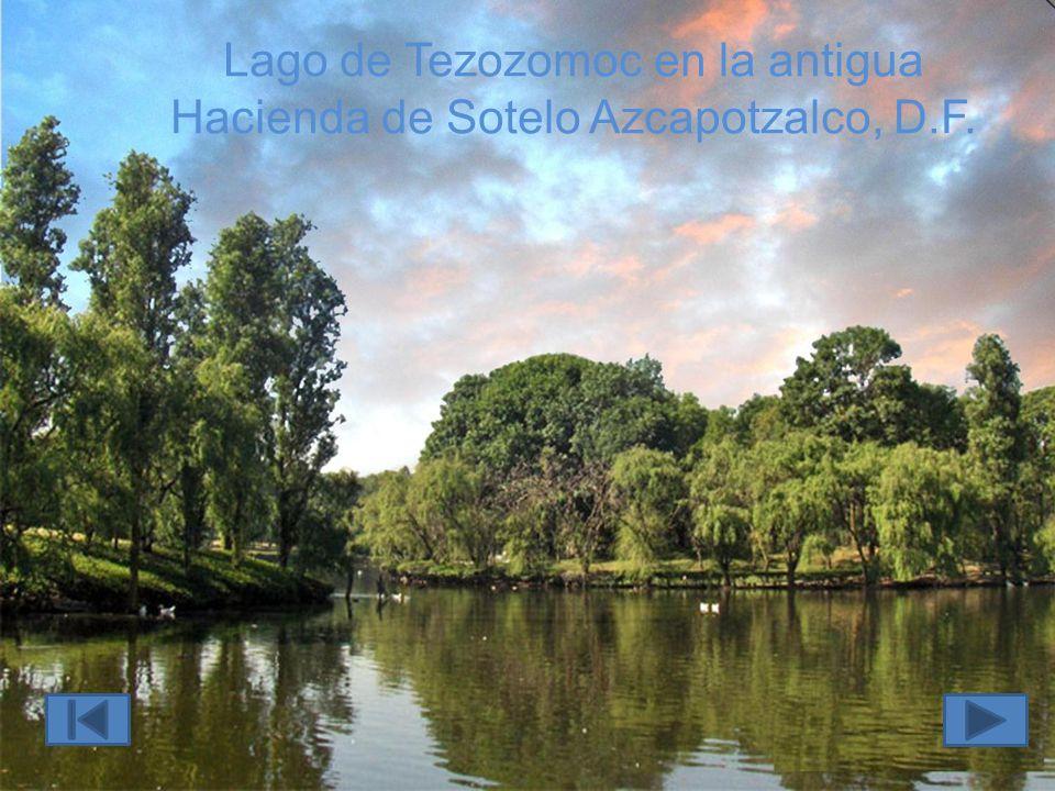 Lago de Tezozomoc en la antigua Hacienda de Sotelo Azcapotzalco, D.F.