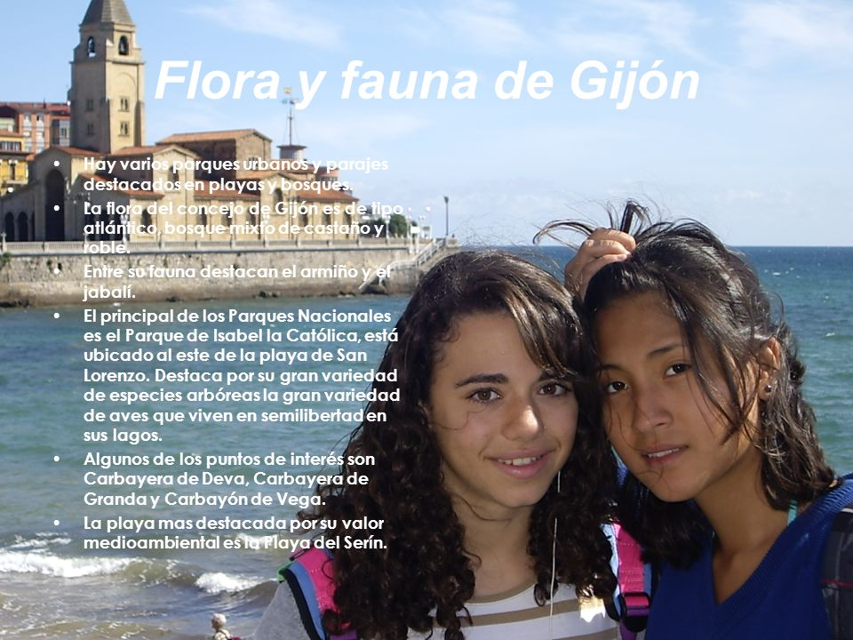 Flora y fauna de Gijón Hay varios parques urbanos y parajes destacados en playas y bosques.