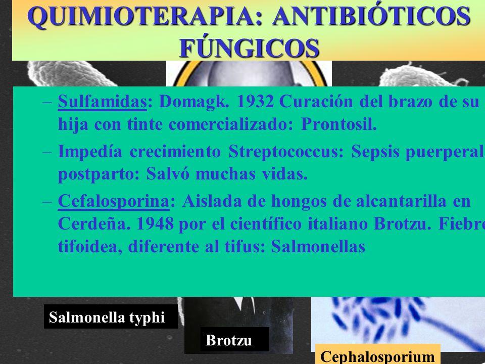 QUIMIOTERAPIA: ANTIBIÓTICOS FÚNGICOS