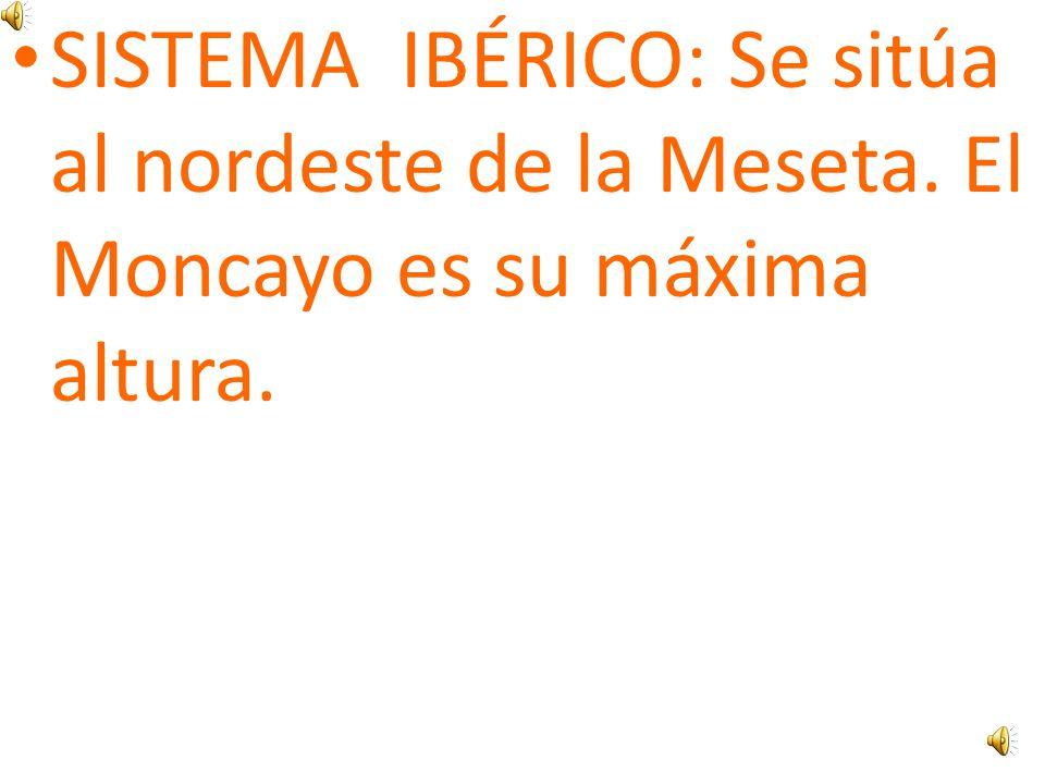 SISTEMA IBÉRICO: Se sitúa al nordeste de la Meseta