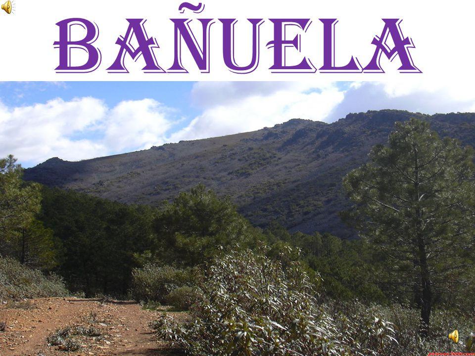 Bañuela
