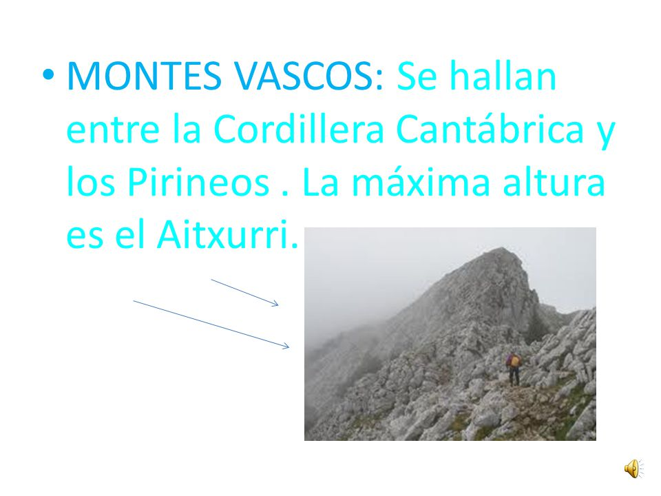 MONTES VASCOS: Se hallan entre la Cordillera Cantábrica y los Pirineos
