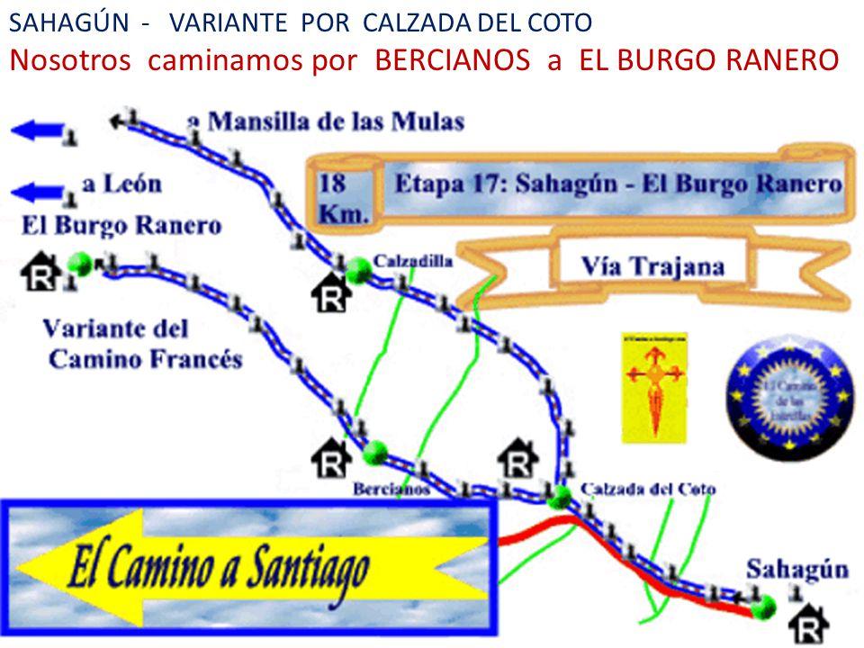 Nosotros caminamos por BERCIANOS a EL BURGO RANERO