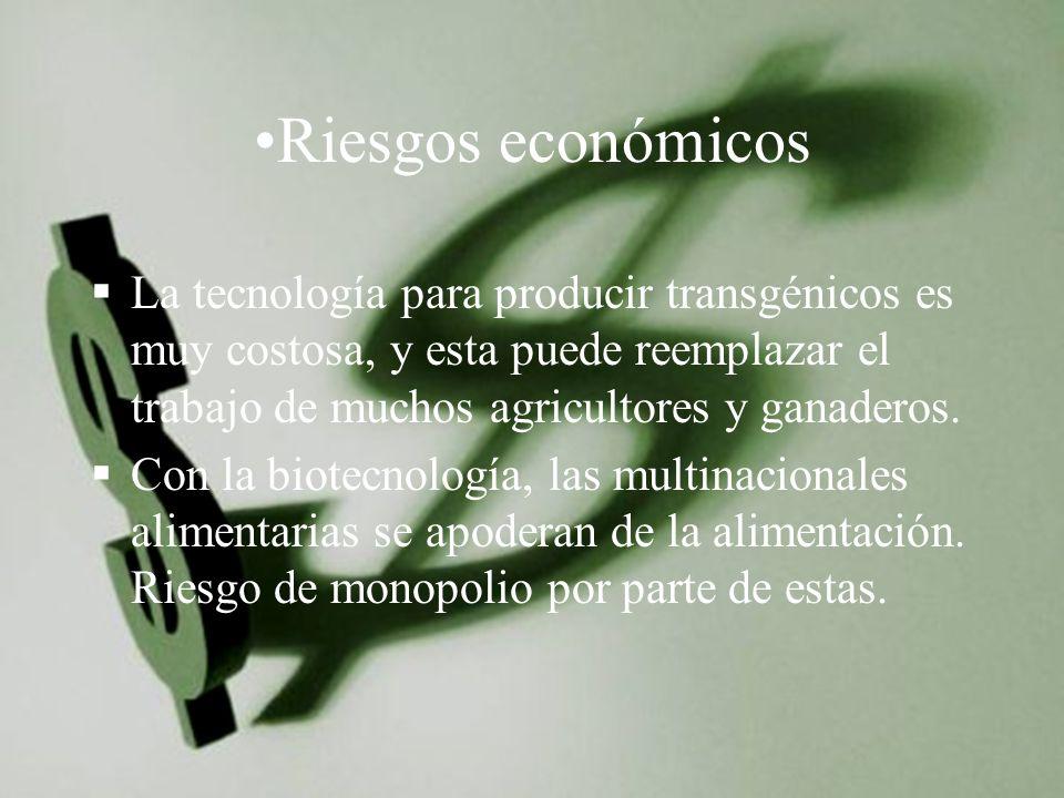 Riesgos económicos La tecnología para producir transgénicos es muy costosa, y esta puede reemplazar el trabajo de muchos agricultores y ganaderos.