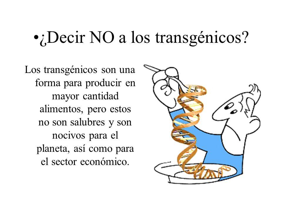 ¿Decir NO a los transgénicos