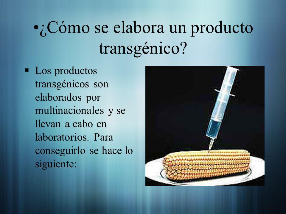 ¿Cómo se elabora un producto transgénico