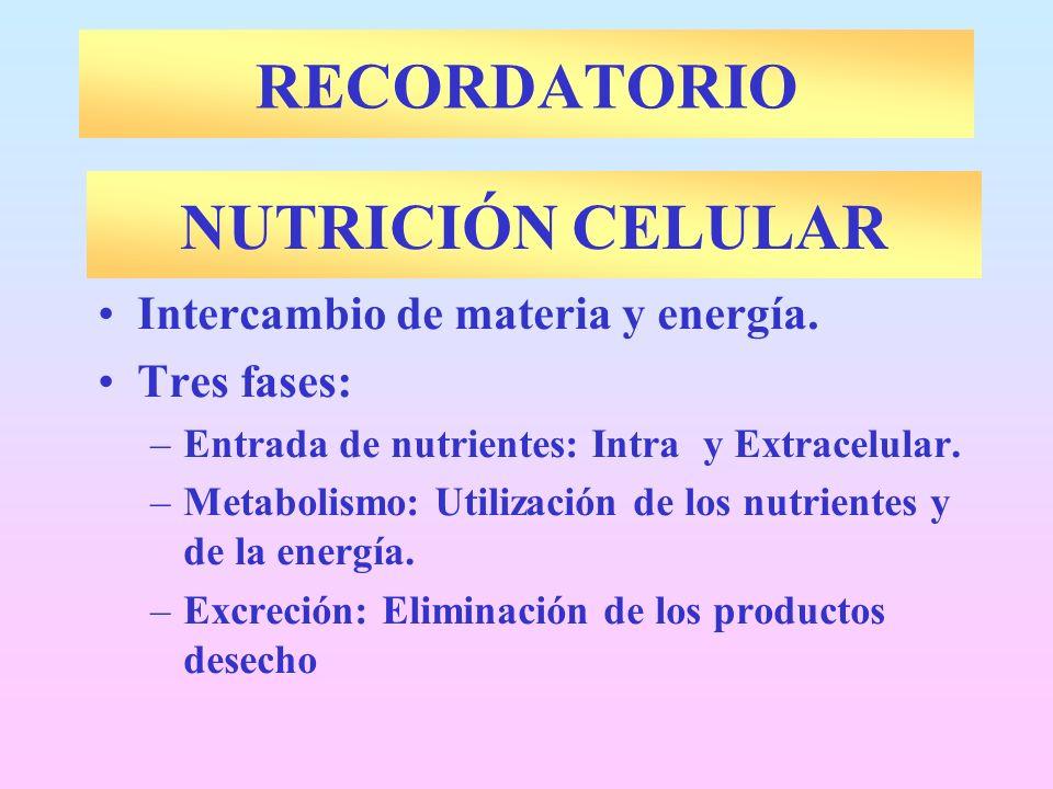 RECORDATORIO NUTRICIÓN CELULAR