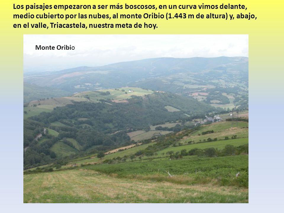 Los paisajes empezaron a ser más boscosos, en un curva vimos delante, medio cubierto por las nubes, al monte Oribio (1.443 m de altura) y, abajo, en el valle, Triacastela, nuestra meta de hoy.