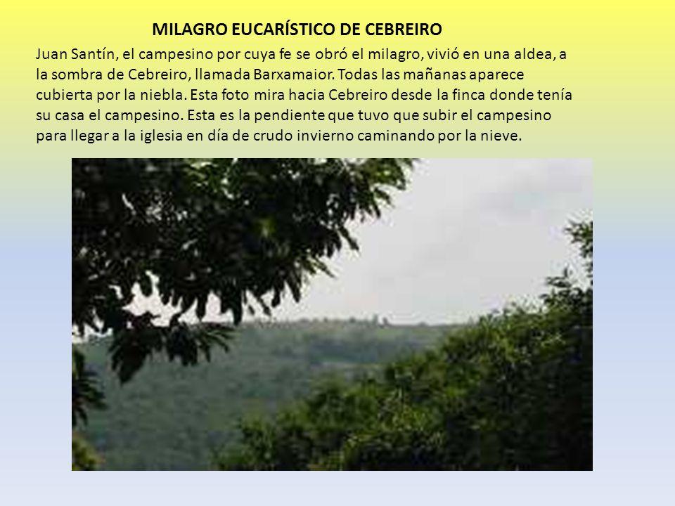 MILAGRO EUCARÍSTICO DE CEBREIRO