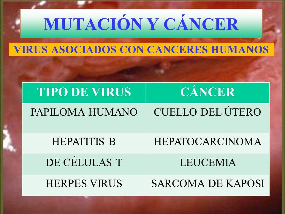 MUTACIÓN Y CÁNCER TIPO DE VIRUS CÁNCER