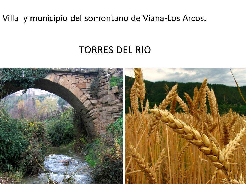 Villa y municipio del somontano de Viana-Los Arcos.
