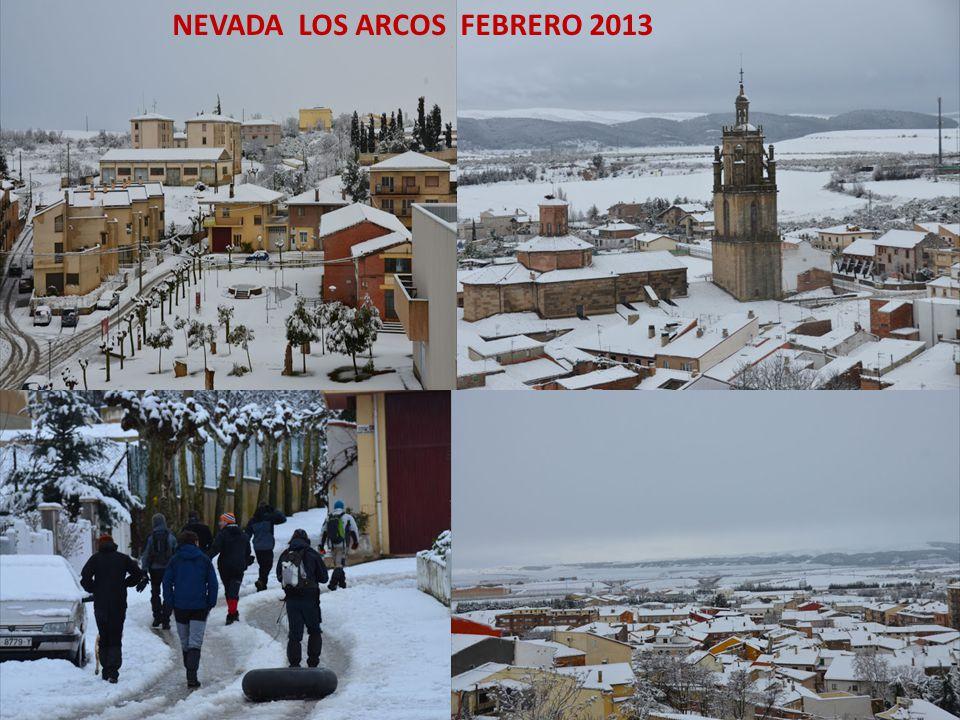 NEVADA LOS ARCOS FEBRERO 2013